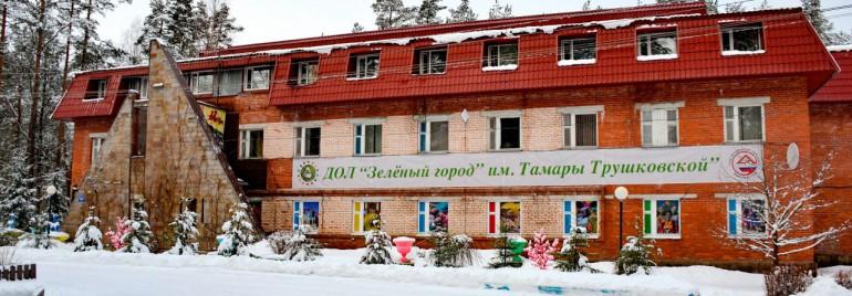 Открытый семинар организаторов отдыха и оздоровления детей прошел в Санкт-Петербурге