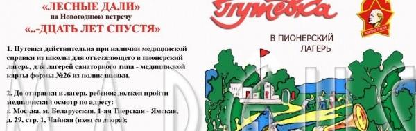 Порядок предоставления путевок детям за счет средств областного бюджета в 2012 году