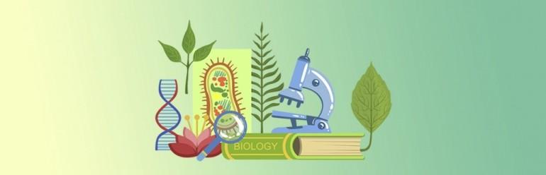 Зауральских школьников приглашают на профильную смену «Олимпиадная биология»