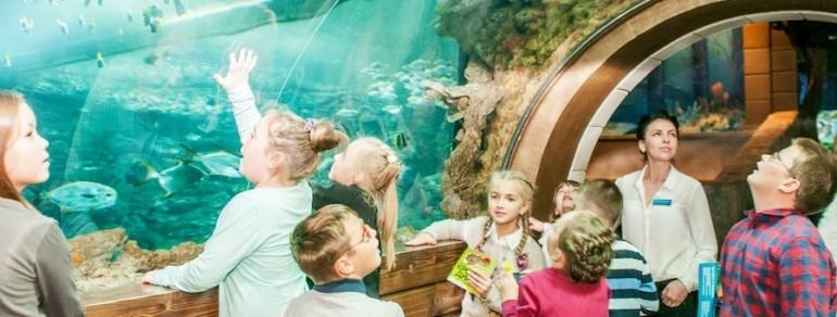 ОСИГ: госпрограмма по детскому туризму поможет восстановлению отрасли